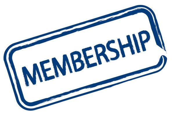 Bronze - Monthly Membership