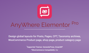 AnyWhere Elementor Pro v2.14.1