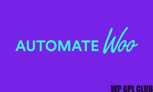 AutomateWoo 5.0.3 - The #1 sales and marketing plugin for WooCommerce