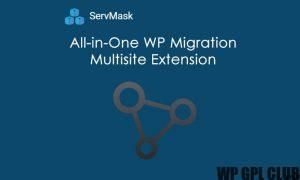 All-In-One WP Migration Multisite Extension v3.99