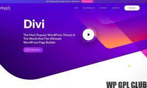 Divi v4.6.7 - Premium WordPress Theme